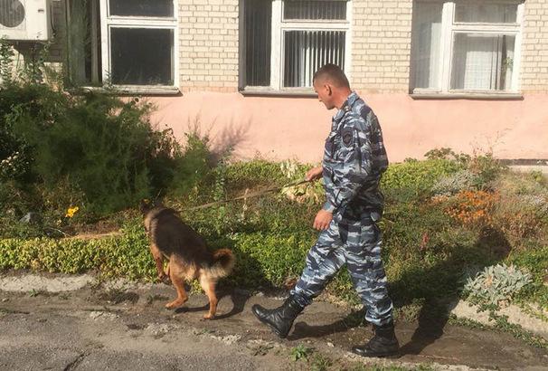 В Новочеркасске стартовала спецоперация «Дети России»