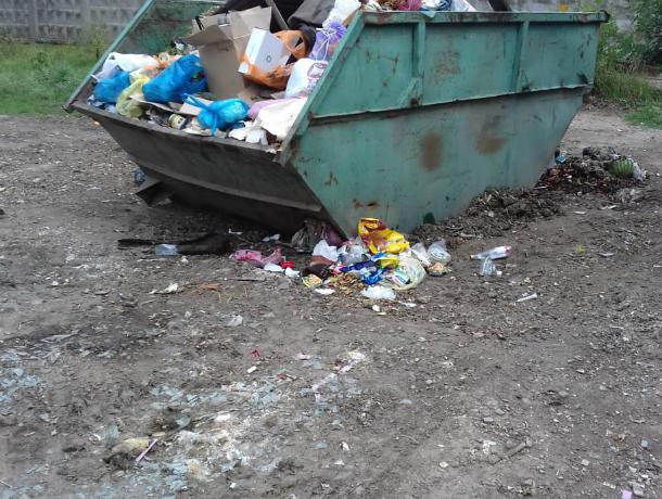 После публикации «Блокнота Новочеркасск» с улицы Украинской вывезли мусор