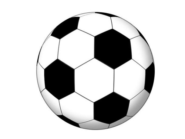 Под Новочеркасском соберут гигантский футбольный мяч из автомобилей