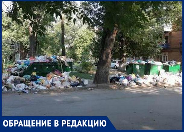 «Город поглотил мусорный хаос», - новочеркасцы
