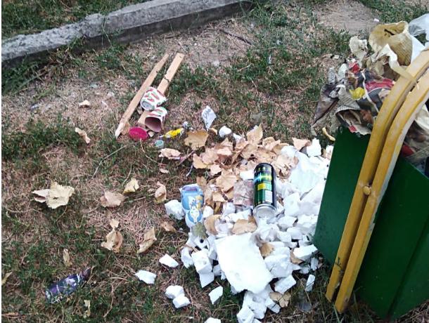 Жители улицы Буденовской Новочеркасска забыли, когда у них вывозили мусор