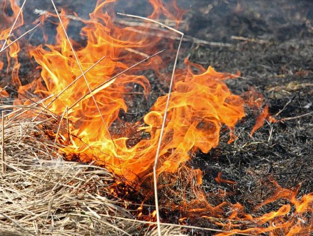 Не жечь сухую траву попросили спасатели новочеркасцев