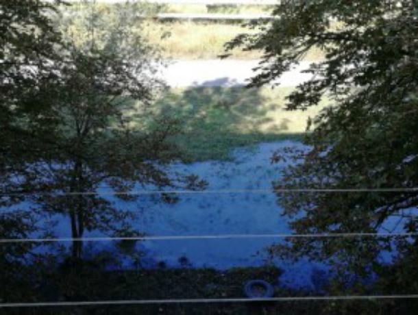 ООО «Сириус», устроившее канализационное болото под окнами новочеркасцев, привлечено к ответственности