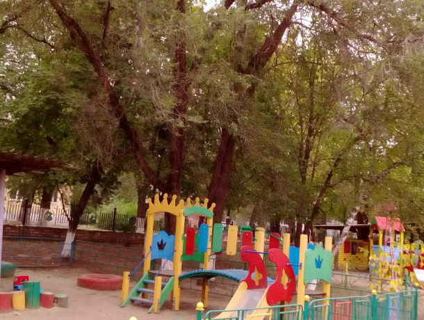 «В детском саду № 49 проведут опиловку деревьев», - администрация Новочеркасска