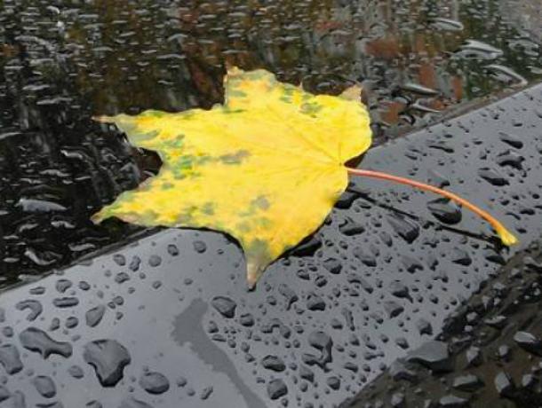 Рабочая неделя в Новочеркасске начнется с дождей