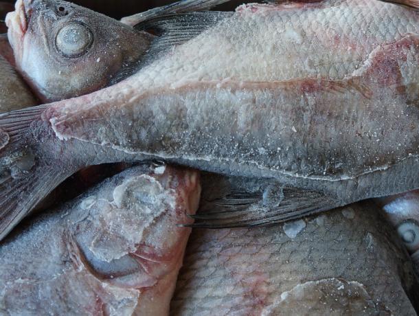 В Новочеркасск пытались провести 4 тонны подозрительной рыбы без документов
