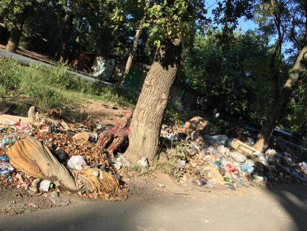 «Помогите жителям забытого  властями поселка Донского», - жительница Новочеркасска