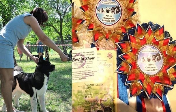 Самый очаровательный щенок проживает в Новочеркасске