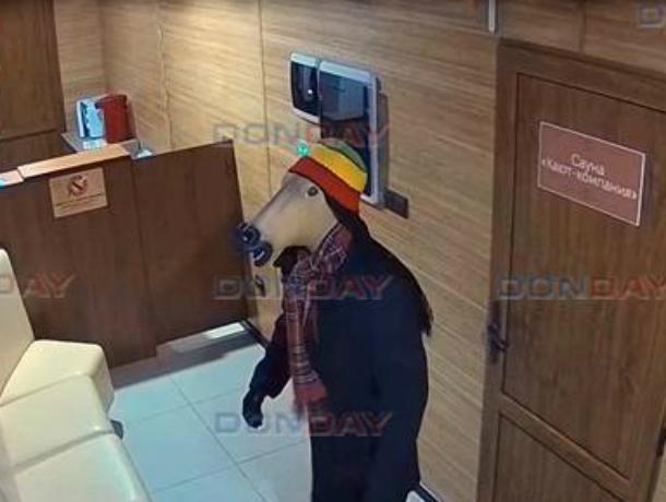 Человек-конь в полосатой шапке ограбил сауну в Новочеркасске