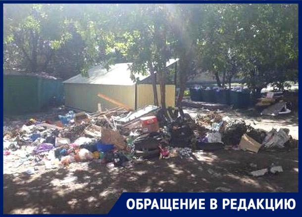 Новочеркасцы возмущены: вывоза мусора приходится ждать неделями