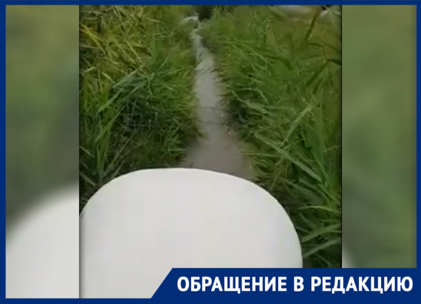 """«Единственная пешеходная дорога превратилась в """"козью"""" тропу», - жительница Новочеркасска"""