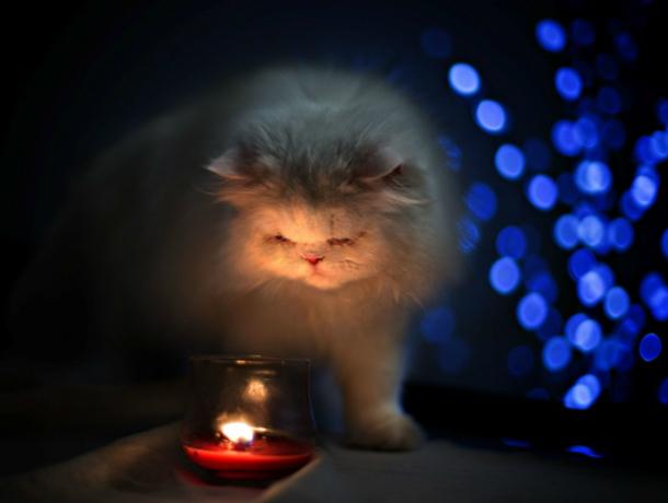 23 мая множеству новочеркасцев придется сидеть без света