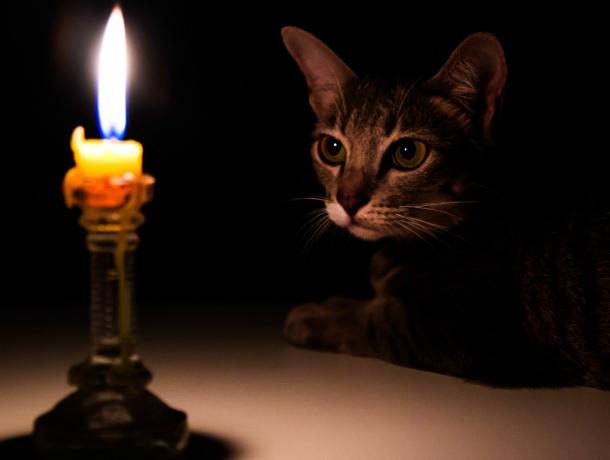 10 августа почти половина Новочеркасска останется без света