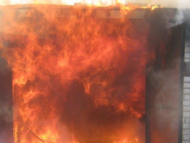 Пожарные 15 минут спасали дом от тянущихся к нему огненных щупалец пожара под Новочеркасском
