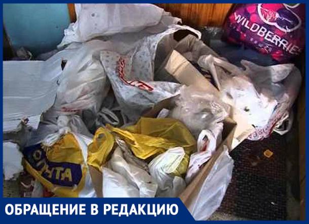 «Соседствуем с мусором и крысами», - жительница Новочеркасска