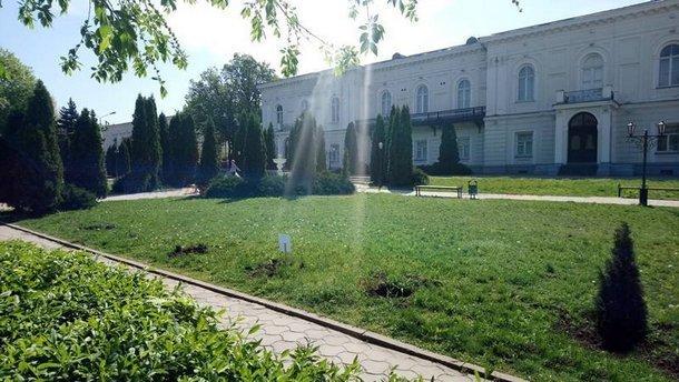 Напротив Атаманского дворца в Новочеркасске неизвестные выкопали туи