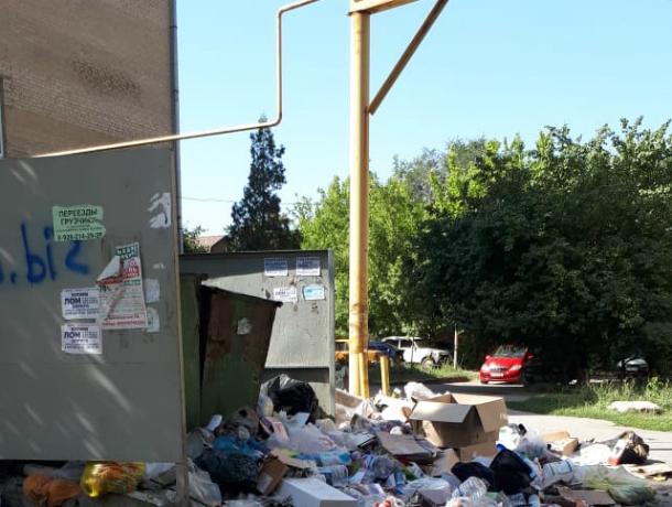 «Контейнерная площадка на Крылова относится к ЮРГПУ», - администрация Новочеркасска