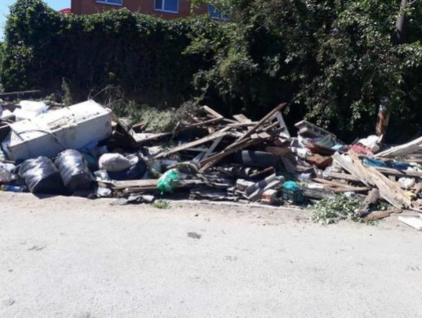 Администрация Новочеркасска пообещала убрать кишащую змеями и крысами помойку в переулке Сосновом