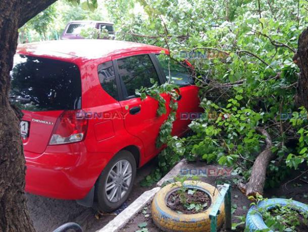 Огромная ветка рухнула на машину в Новочеркасске