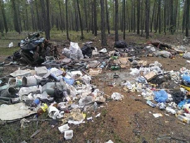 Власти Новочеркасска ищут подрядчика на вывоз дополнительного мусора