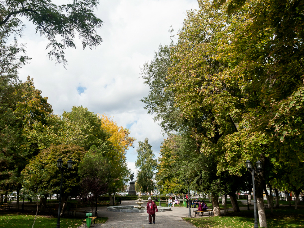 Усилится ветер и похолодает в Новочеркасске на предстоящих выходных