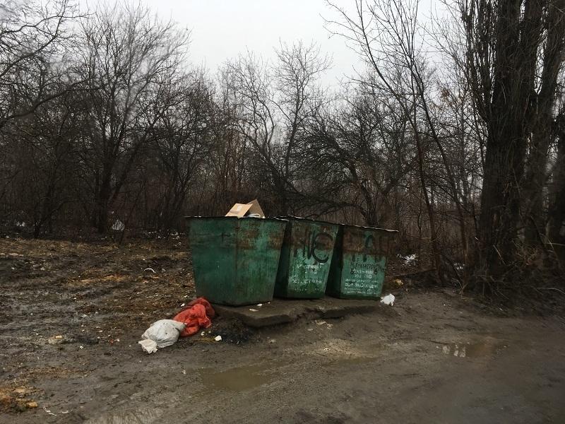Переполненные баки и кучи мусора вокруг: в Новочеркасске из 32 проверенных  контейнерных площадок 14 оказались в плачевном состоянии