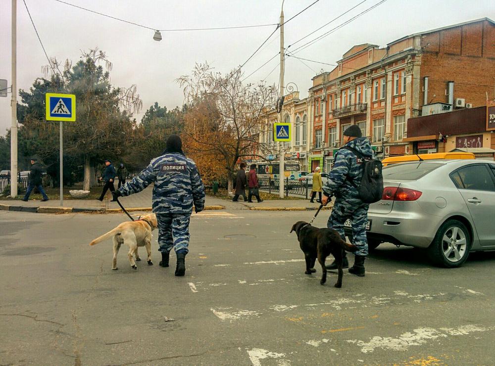Полицейские собаки без намордников навели ужас на жителей Новочеркасска
