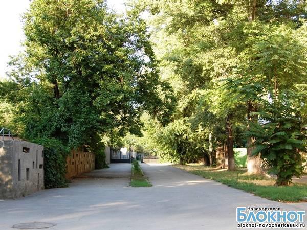 Акробаты Новочеркасска решили привести детский парк в порядок