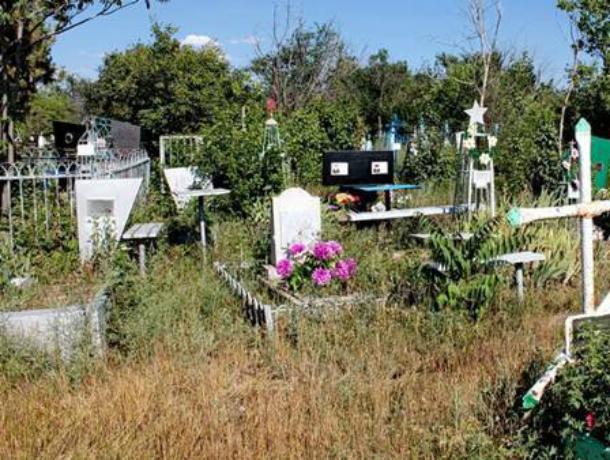 Уборка свалок с новочеркасских кладбищ обойдется городу более чем в два миллиона рублей