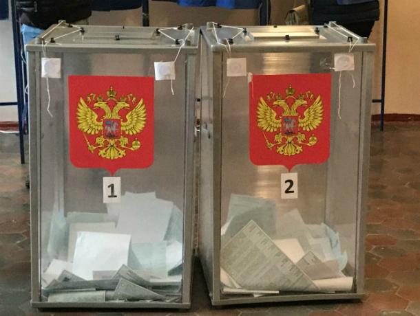 Более 40% жителей Новочеркасска отдали свой голос до 15:00
