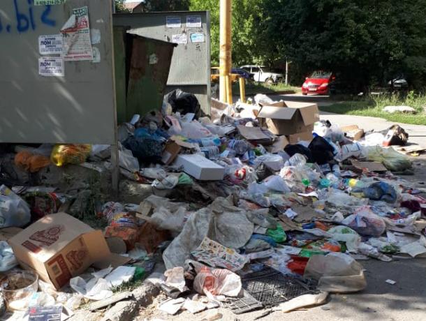В Новочеркасске, чтобы проехать по улице Крылова, автомобилям приходится заезжать на мусорные горы